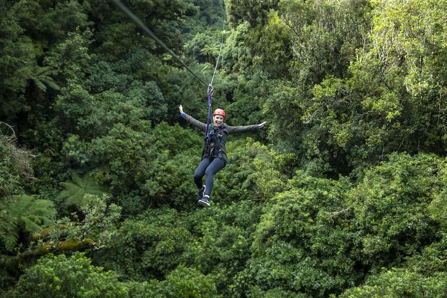 Rotorua Canopy Tours Promo Code New Zealand Travel Tips